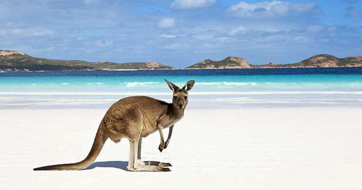 L'Australie : un pays magnifique où l'on peut faire de nombreuses choses